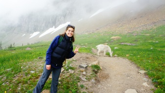 MOUNTAIN GOATS ARE MY FAVORITE!