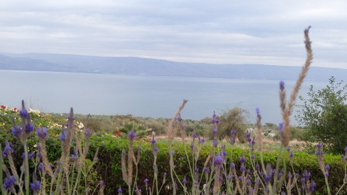 View of the Sea of Galilee from the Mount of Beatitudes